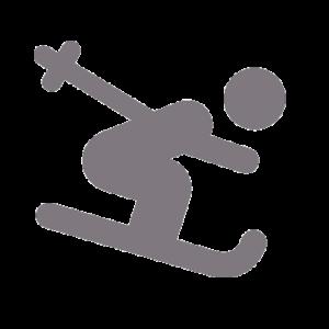 icone-ski